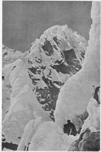 The North-East Ridge of  Kangchenjunga. From the Adlerhorst. Photo. Bavarian Expedition.