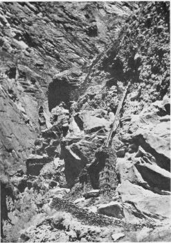 Climbing a cliff ladder near Trun in the chayal Chu valley, Upper Subansiri See page 144(Photo: G. Sherriff)