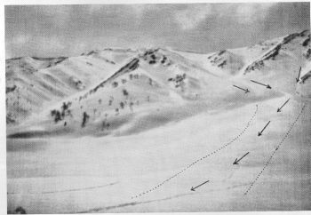Track of the avalanche of 1st March 1936 (Photographed towards the end of March)