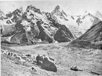 south branch of malana glacier, peak 18,413 and manikaren spires, looking south from third shelf
