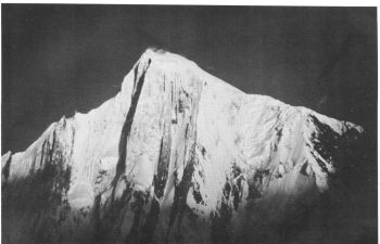 Spantik. 'The Golden PUlar' climbed is in centre. The route of descent follows the ridge falling to the right. 									(A. V. Saunders)