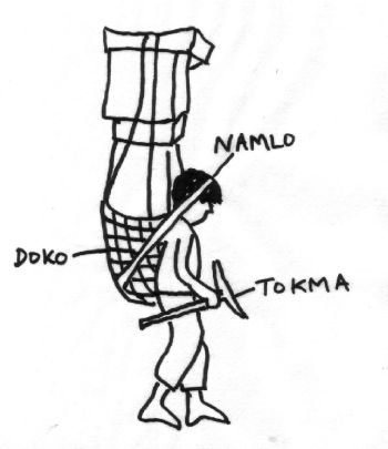 Nepalese porters use special equipment for load carrying: a tumpline (namlo) links the forehead to a basket (doko), which leans along the bent back and is periodically rested on a T-shaped stick (tokma) also used as an alpenstock. (Fig.2)
